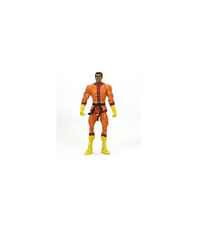 DC Universe Classics Bronze Tiger Loose [SOLD OUT]
