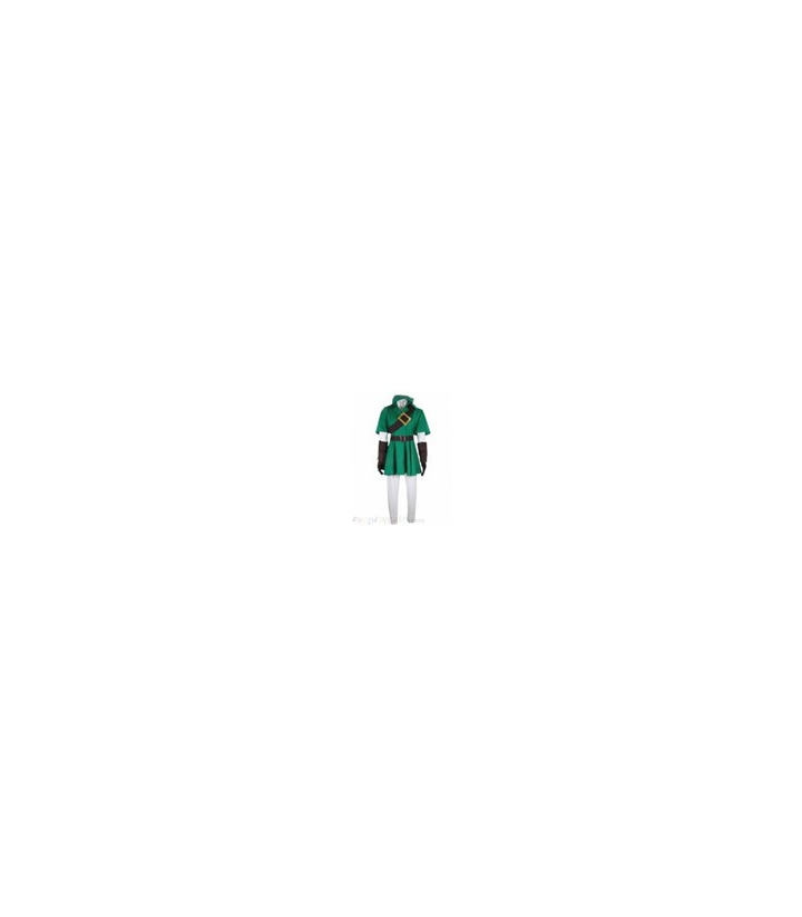La leyenda de Zelda Cosplay Costume Enlace
