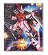 Gundam Master Grade 1/100 Model Kit MG Destiny Gundam