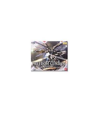 Gundam Master Grade 1/100 Model Kit MG Anavel Gatos Gelgoog