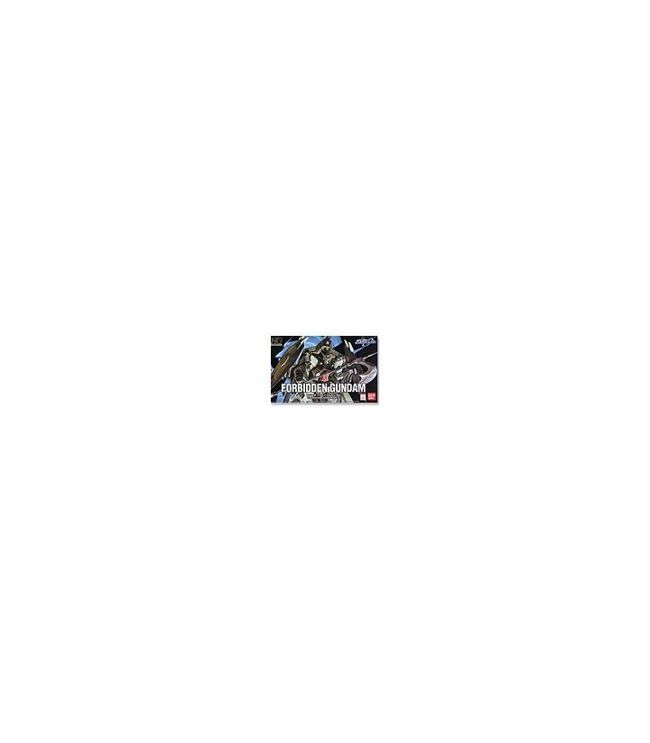 Gundam Seed Destiny HG 1/144 Forbidden Gundam [SOLD OUT]