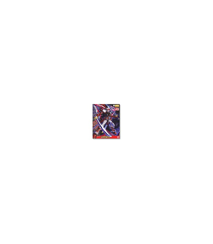 Gundam Master Grade 1/100 MG Astray Red Frame 30th Anniversary